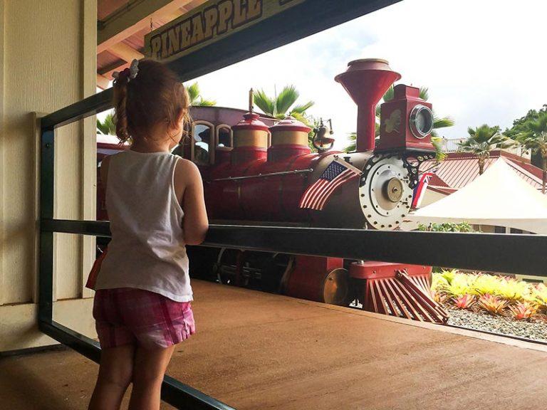 Oahu Dole plantation train ride
