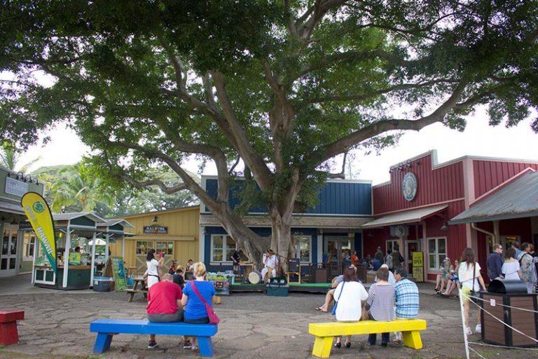 Halewai North shore Oahu shopping plaza