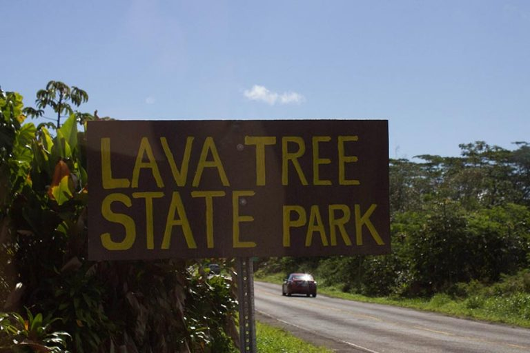 Lave tree state park sign