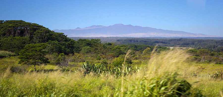 view of Mauna Kea in the distance.