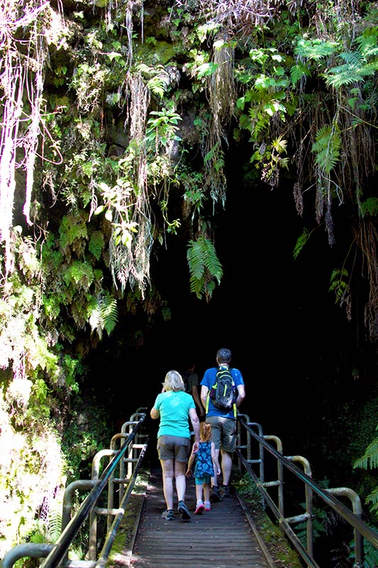 walking bridge and greenery surrounding the opening to the lava tube