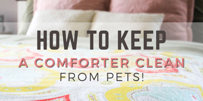 How to keep a comforter clean with dogs